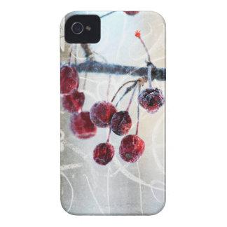 Chalkboard Berries iPhone 4 Case