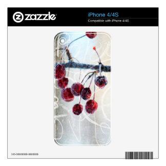 Chalkboard Berries iPhone 4 Decal