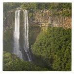 Chamarel Cascada-más alto en Mauricio, encima Teja Cerámica