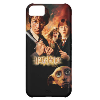 Chamber of Secrets - French Case For iPhone 5C