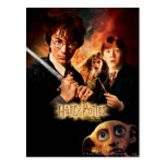 Chamber of Secrets - French Postcard