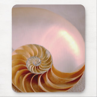 Chambered Nautilus Mouse Pad