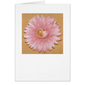 Chambered Nautilus & Pink flower Card