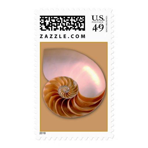 Chambered Nautilus Stamps