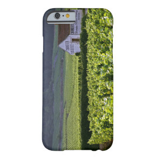 Chambertin Clos de Beze Grand Cru vineyard with Barely There iPhone 6 Case