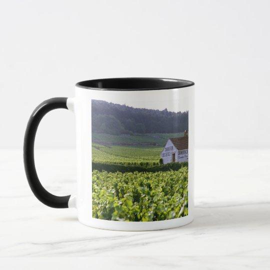 Chambertin Clos de Beze Grand Cru vineyard with Mug