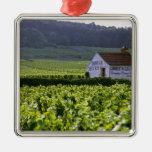 Chambertin Clos de Beze Grand Cru vineyard with Christmas Tree Ornament