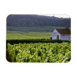 Chambertin Clos de Beze Grand Cru vineyard with Vinyl Magnet