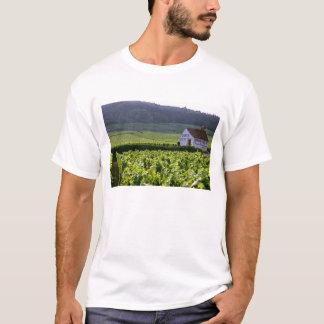 Chambertin Clos de Beze Grand Cru vineyard with T-Shirt