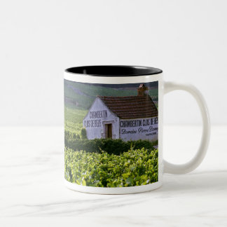 Chambertin Clos de Beze Grand Cru vineyard with Two-Tone Coffee Mug