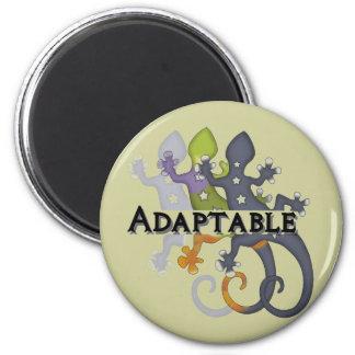 Chameleon Adaptable Magnet