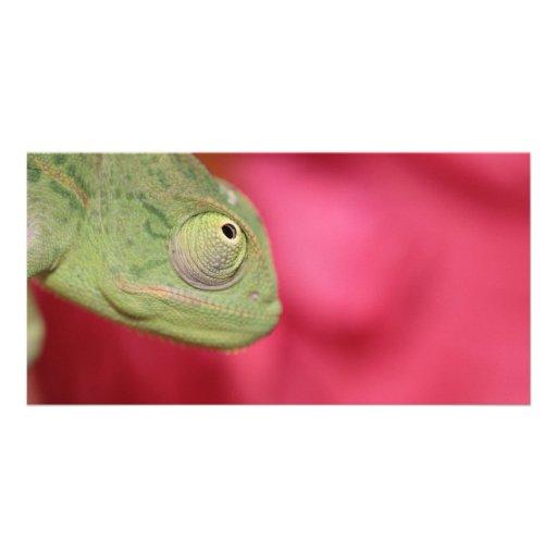 chameleon custom photo card