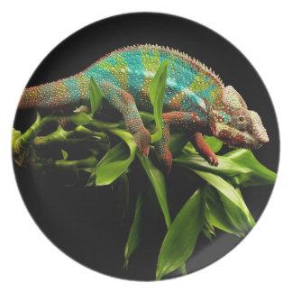 Chameleon Dinner Plate
