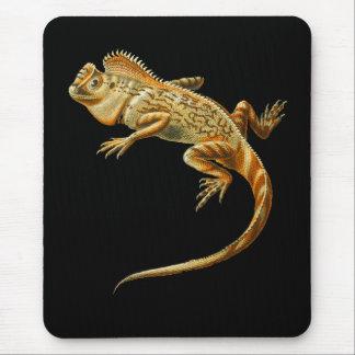 Chameleon dragon mouse pad