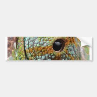 Chameleon Eye Mod Stylish Animal Bumper Sticker