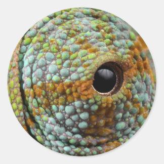 Chameleon Eye Stickers