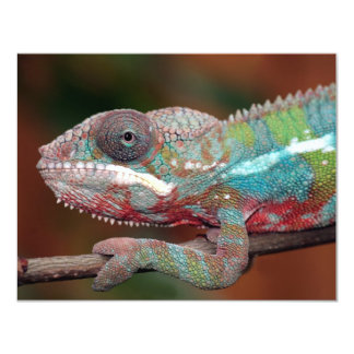 chameleon 4.25x5.5 paper invitation card