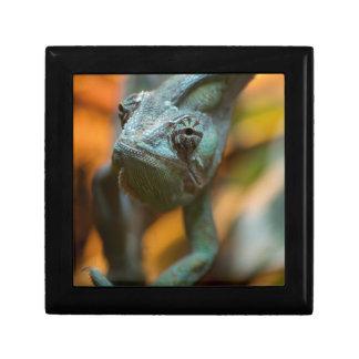 Chameleon Jewelry Box