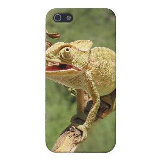 Chameleon Lizard Skin part 1 Cover For iPhone SE/5/5s