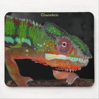 Chameleon Mousepad