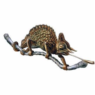 Chameleon Photo Sculpture