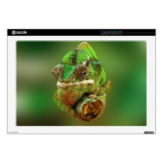 Chameleon Photo Skin For Laptop