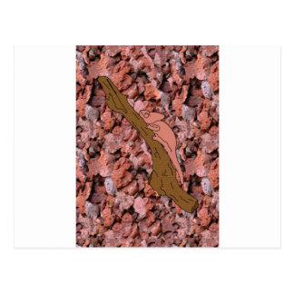 Chameleon Russet Postcard
