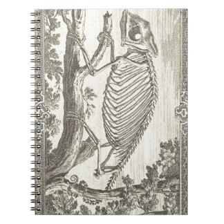 Chameleon Skeleton Illustration Spiral Notebook
