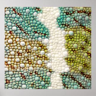 chameleon skin detail poster