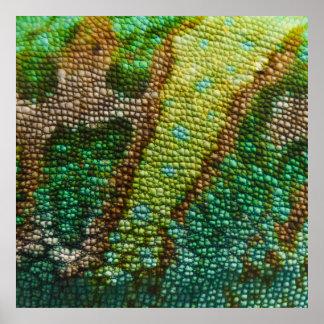 Chameleon Skin Texture Template Poster