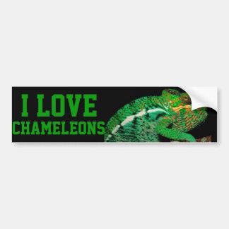 Chameleons Bumper Sticker
