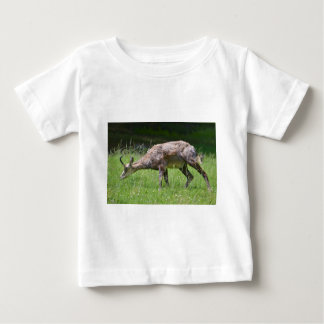 Chamois eating grass baby T-Shirt