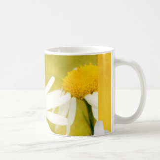 Chamomile bloom in the summer light coffee mug