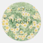 Chamomile Daisy Ex Libris Round Stickers