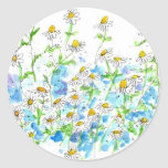 Chamomile Daisy Garden Herb Watercolor Classic Round Sticker