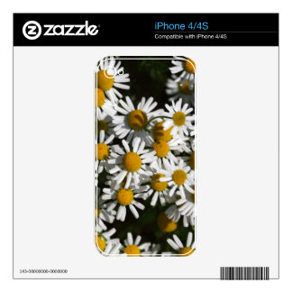 Chamomile flowers decal for the iPhone 4S