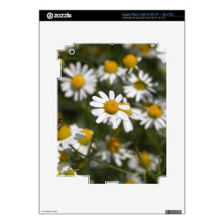 Chamomile flowers iPad 3 decal