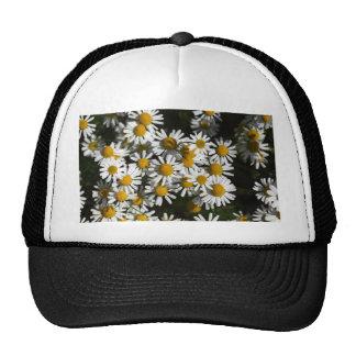 Chamomile flowers trucker hat