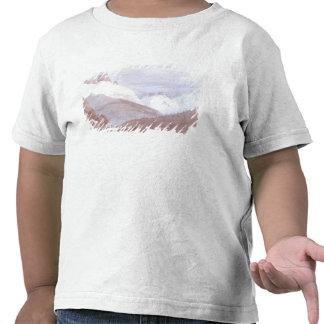 Chamonix and Martigny Tshirts