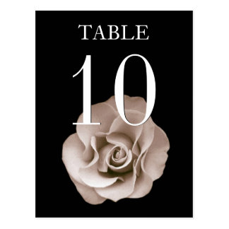 Champagne and Black Rose Banquet Table Number Card Postcard