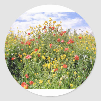 Champagne and Flowers Classic Round Sticker