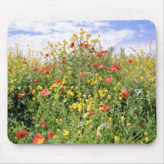 Champagne and Flowers Mouse Pad