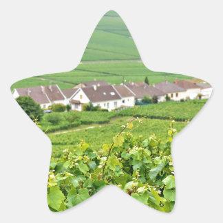 Champagne-Ardenne landscape, France Star Sticker