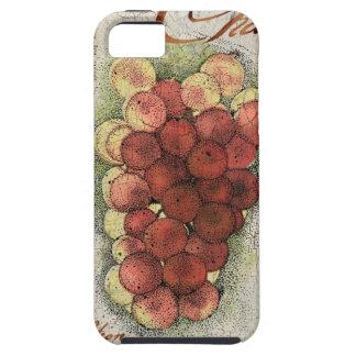 Champagne & Cognac Grapes iPhone SE/5/5s Case