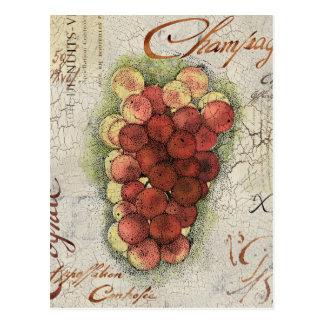 Champagne & Cognac Grapes Postcard