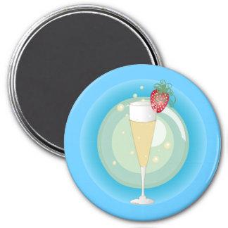 Champagne Fridge Magnets