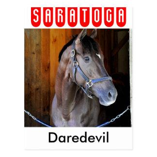 """Champagne Stakes Winner """"Daredevil"""" Postcard"""