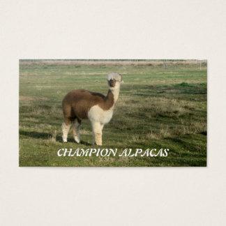 Champion Alpacas Business Card