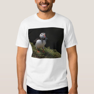 Champion Fisher Puffin T-Shirt