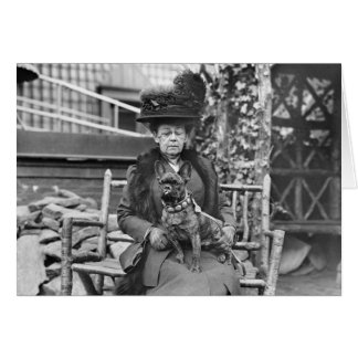 Champion French Bulldog, 1920s Greeting Cards